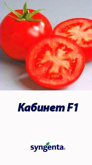 Tomat-KABINET-F1-Syngenta-500-shtuk