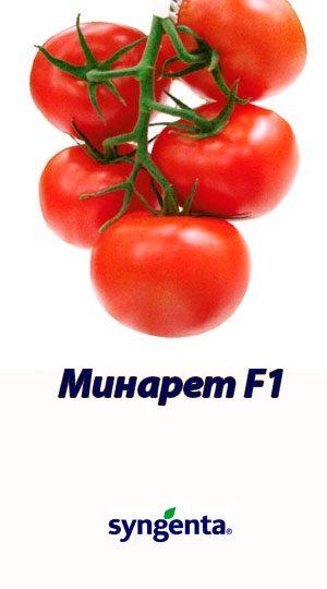 Tomat-MINARET-F1-Syngenta-500-shtuk