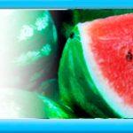 Syngenta купити насіння кавуна, пропозиція інтернет магазину