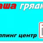 Насіння кормового буряка в Україні пропозиція інтернет магазину